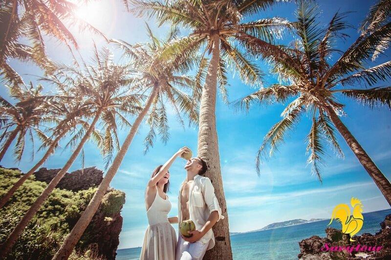 Bãi dừa đảo Lý Sơn