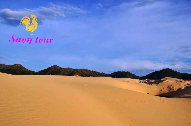 Chơi trượt cát trên đồi cát Phương Mai